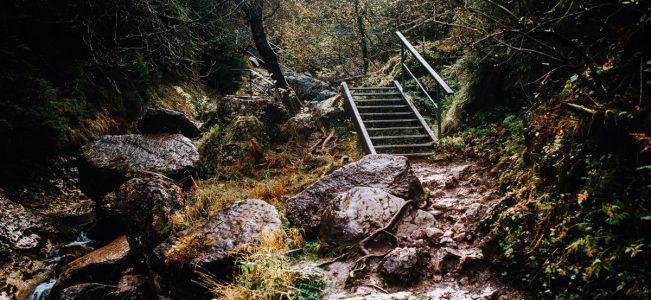 Jesień w Pieninach i październikowy Wąwóz Homole