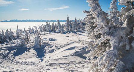 Poradnik: Jak się przygotować i co zabrać w góry zimą?