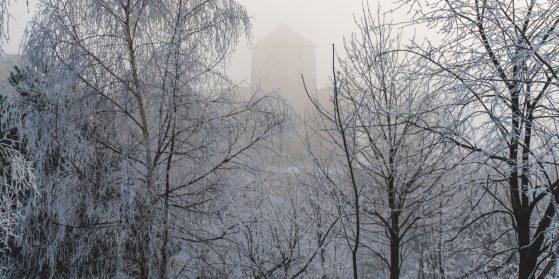 Zamek Tenczyn w Rudnie – informacje praktyczne
