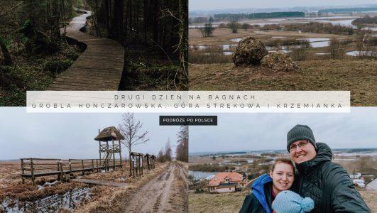 Drugi dzień na bagnach – Grobla Honczarowska, Góra Strękowa i Rezerwat Krzemianka