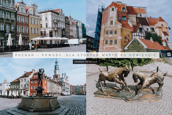 Co warto zobaczyc w Poznaniu