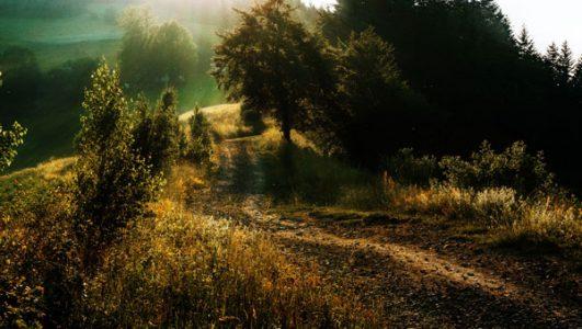 Przełęcz Cisowy Dział w Młyńczyskach i krzyż milenijny