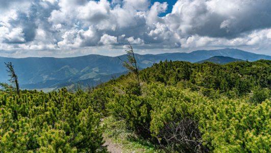 Niżne Tatry – widokowym szlakiem na Salatin