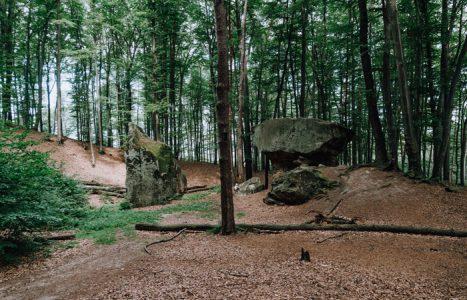 Skałki Chronowskie i Rezerwat Kamień Grzyb