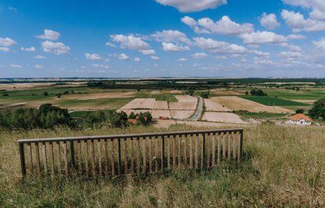 Rezerwat Skowronno w Górach Pińczowskich