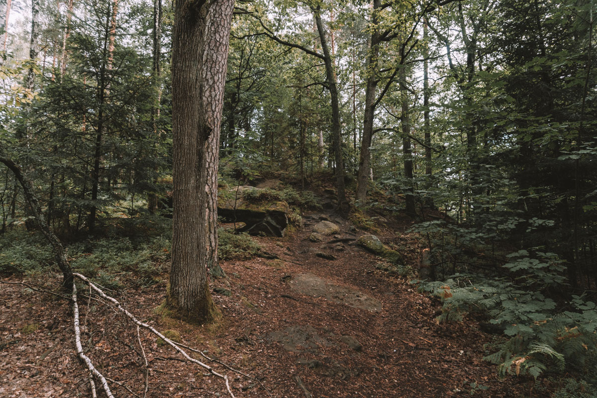Rezerwat Skałki Piekło
