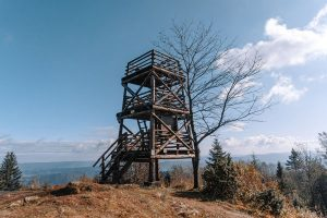 Korbania szczyt w Bieszczadach