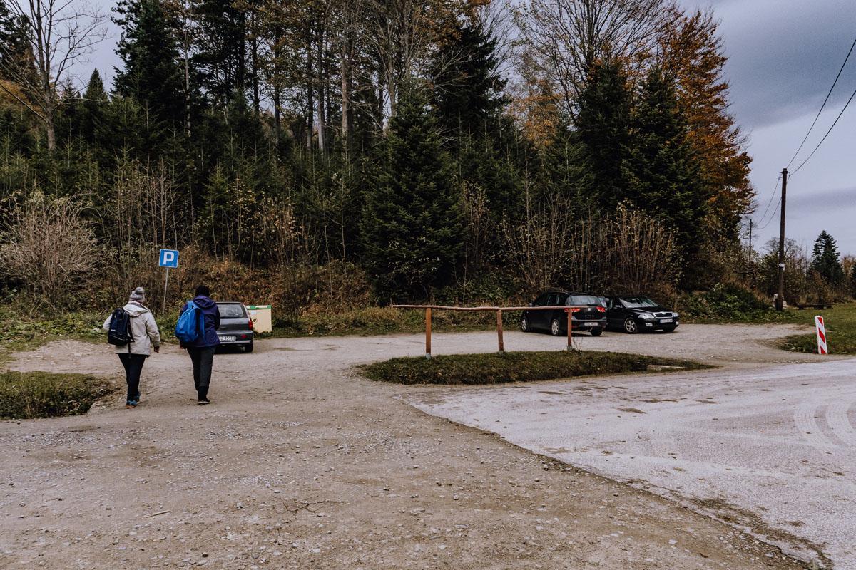 Parking przy żubrach w Mucznem