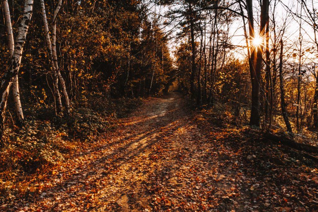 Wschód słońca jesień