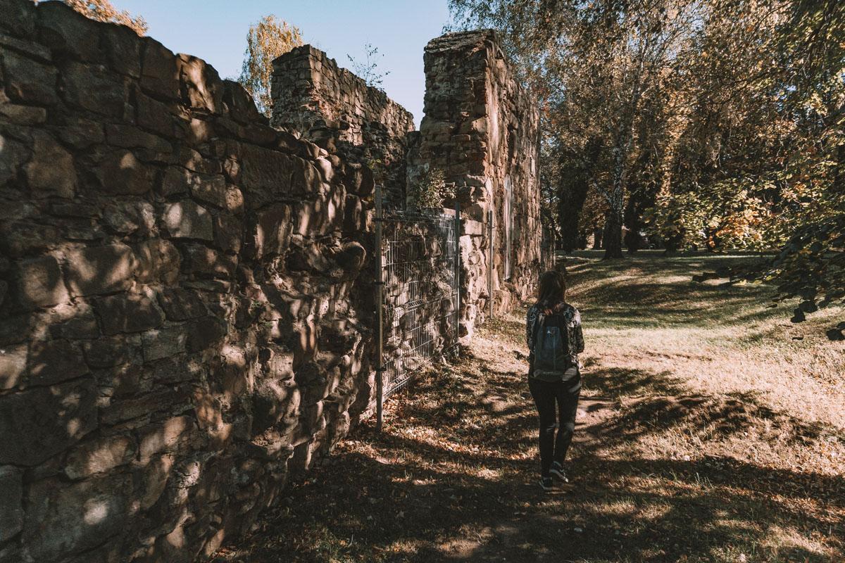 Zamek Królewski w Nowym Sączu