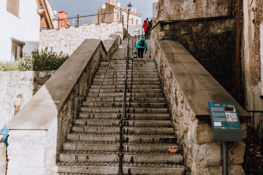 forta i mury miejskie cieszyn