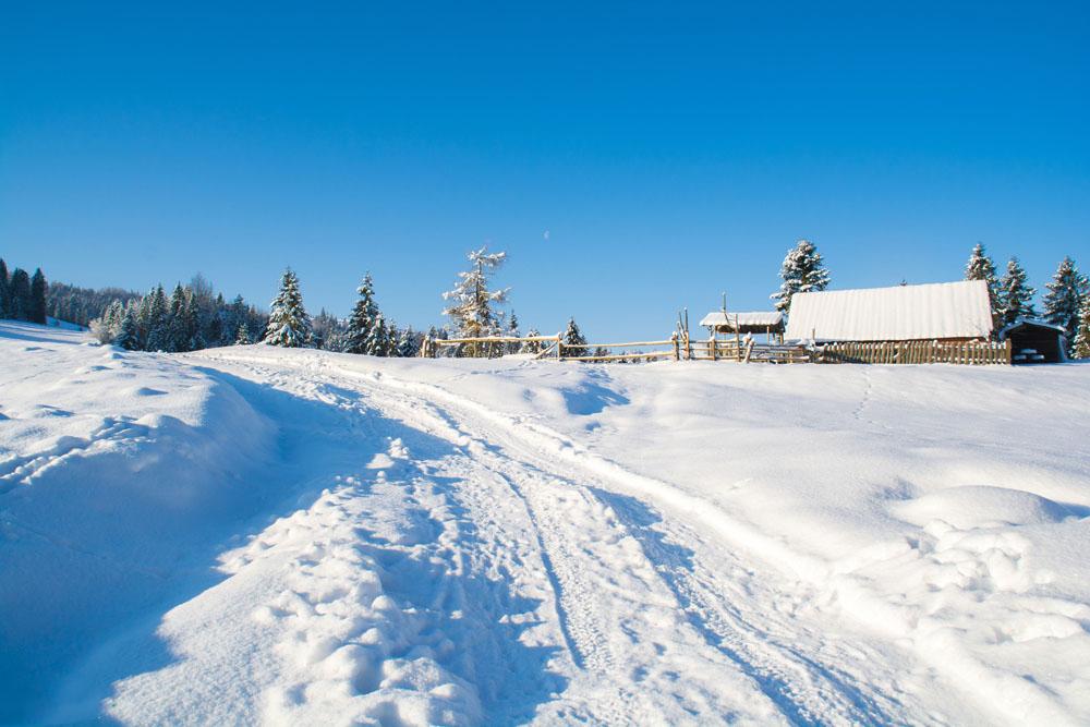 Gdzie w góry zimą?