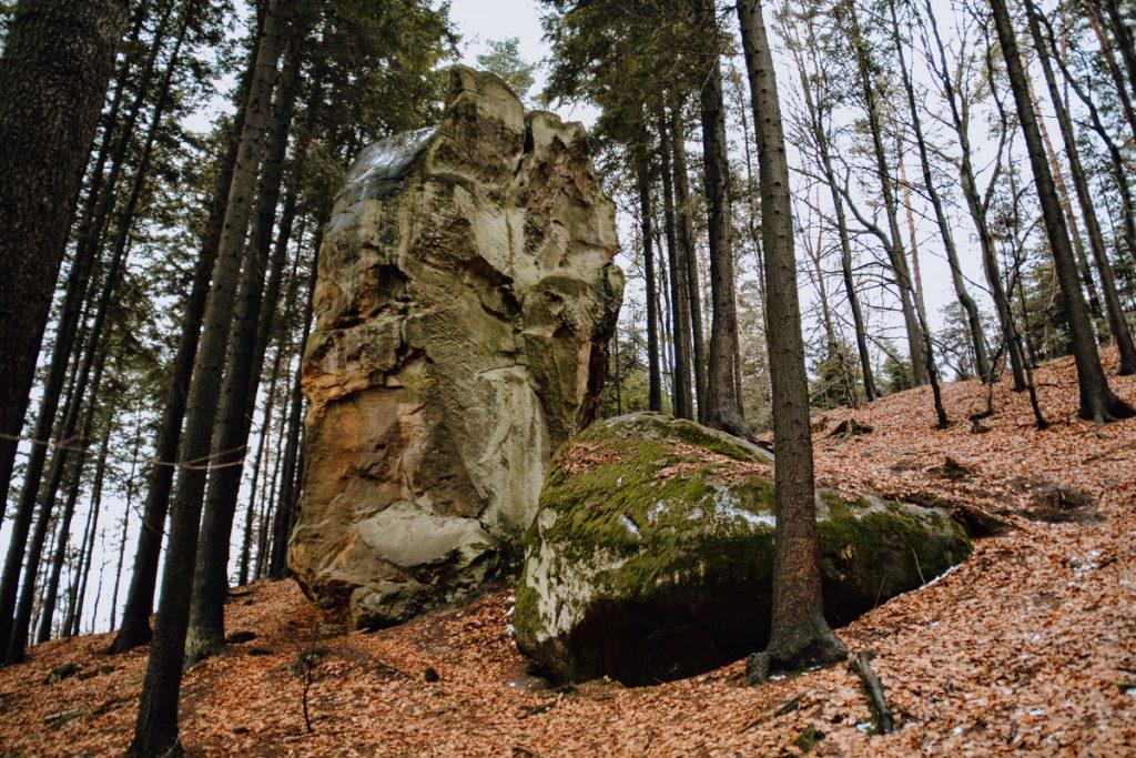 korzenna rezerwat diable skaly