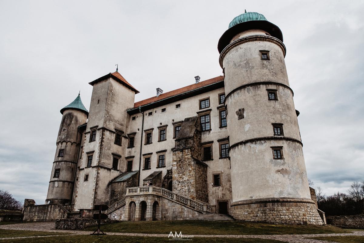 zamek w wisniczu