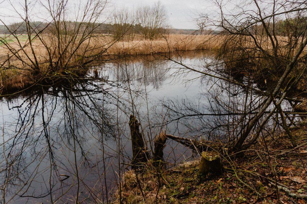 granatowe zrodla jeziora