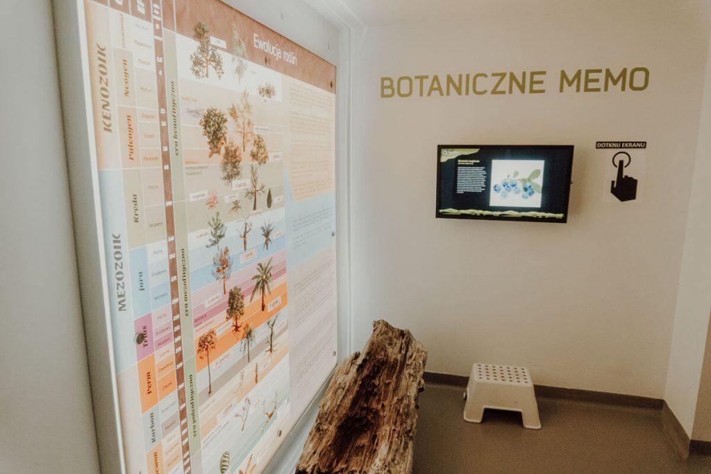 interaktywne muzeum belchatow