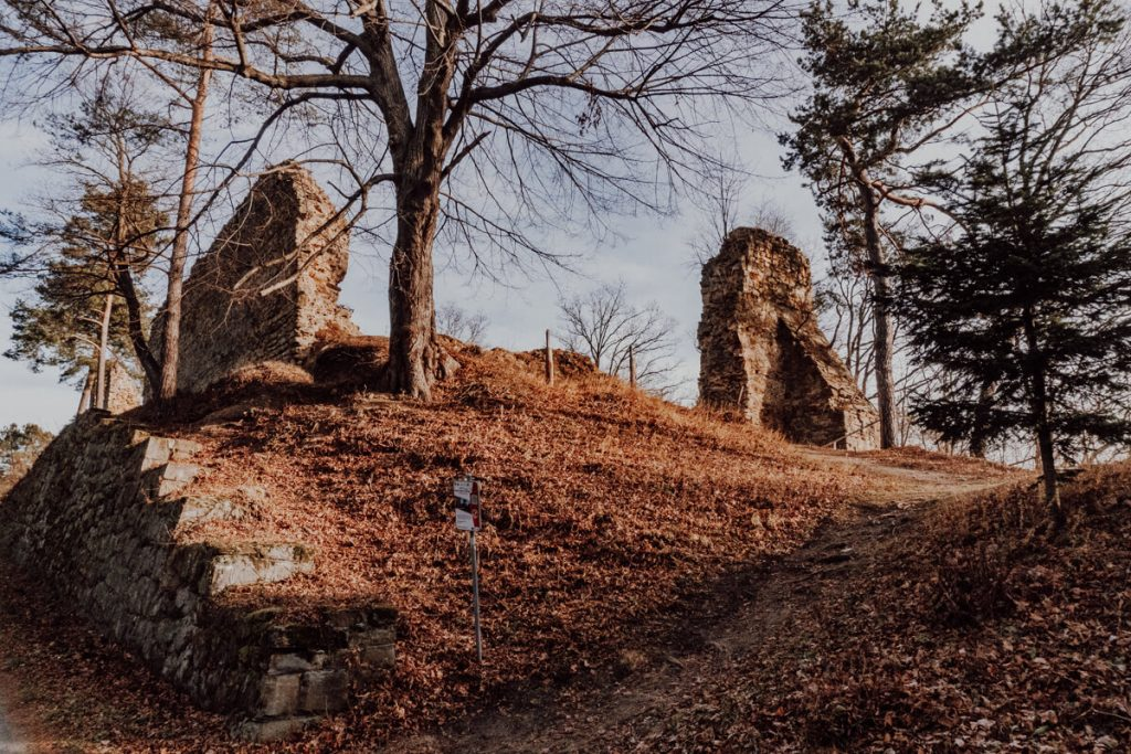ruiny zamku w roznowie