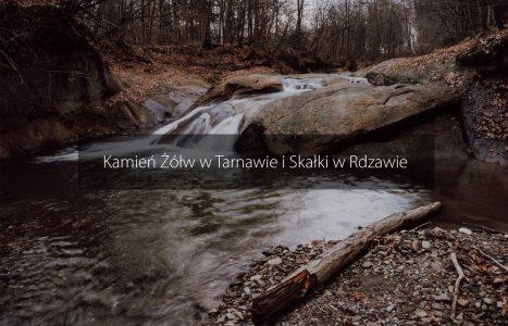 Kamień Żółw w Tarnawie i Skałki w Rdzawie