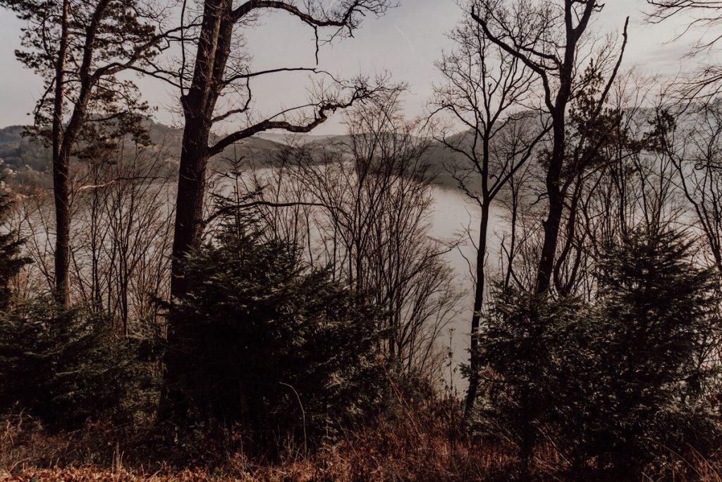 widok z zamku w roznowie