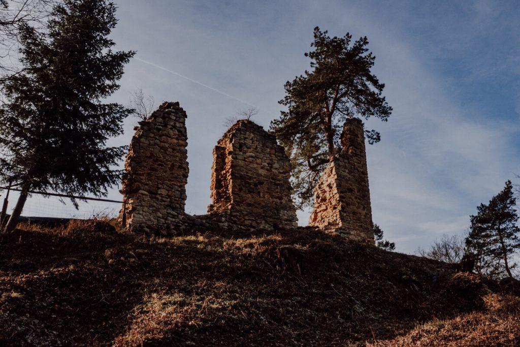 zamek roznow