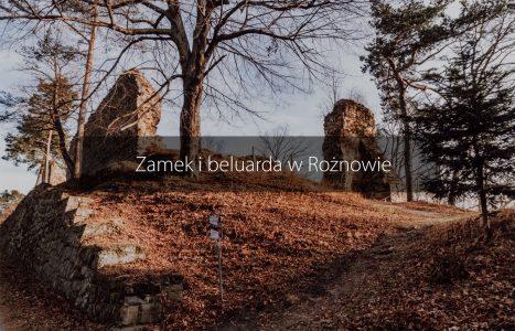 Zamek i beluarda w Rożnowie – zwiedzanie