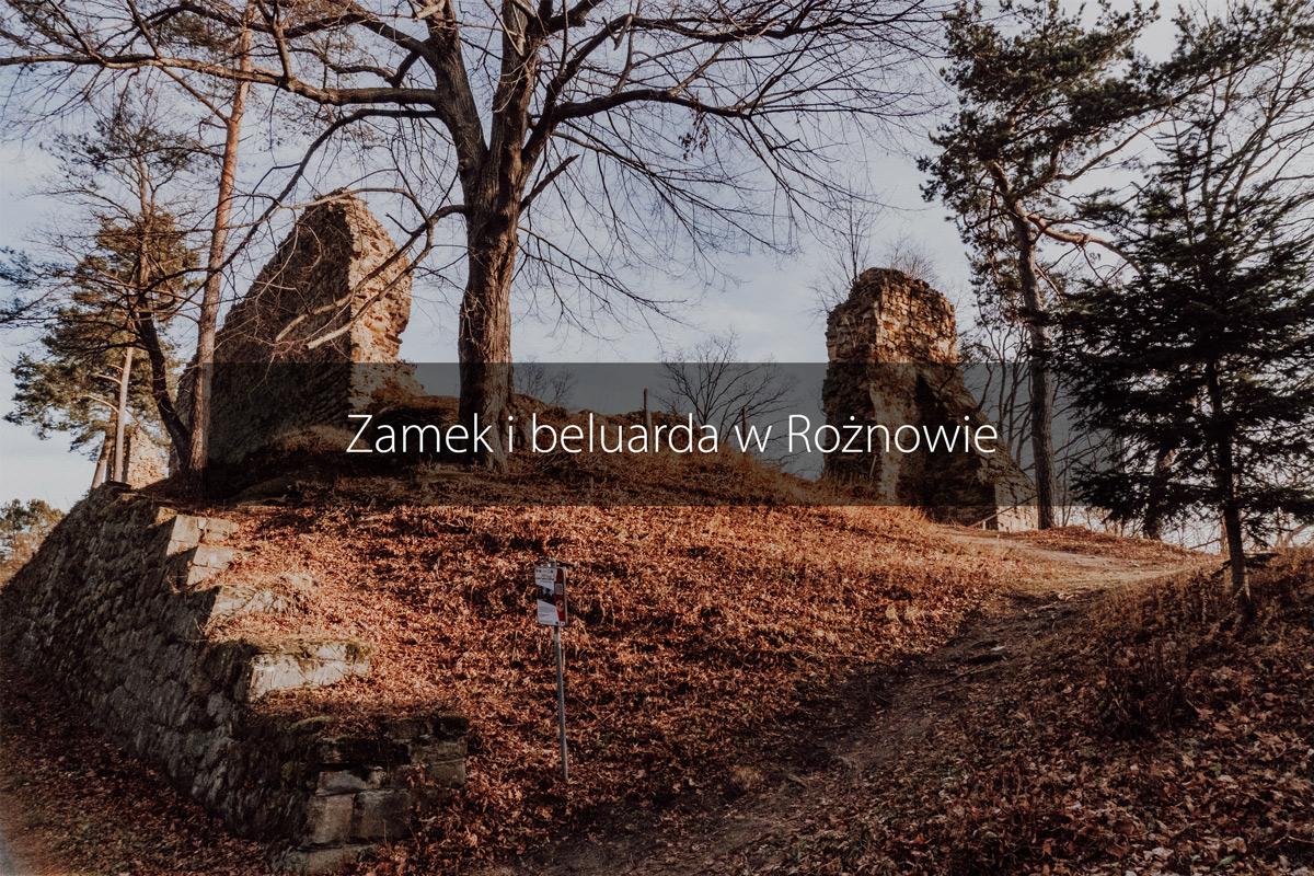 zamek roznow malopolska