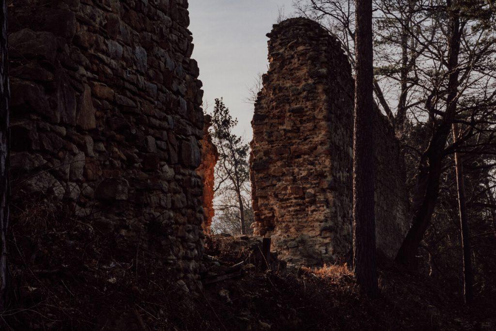 zamek roznowie