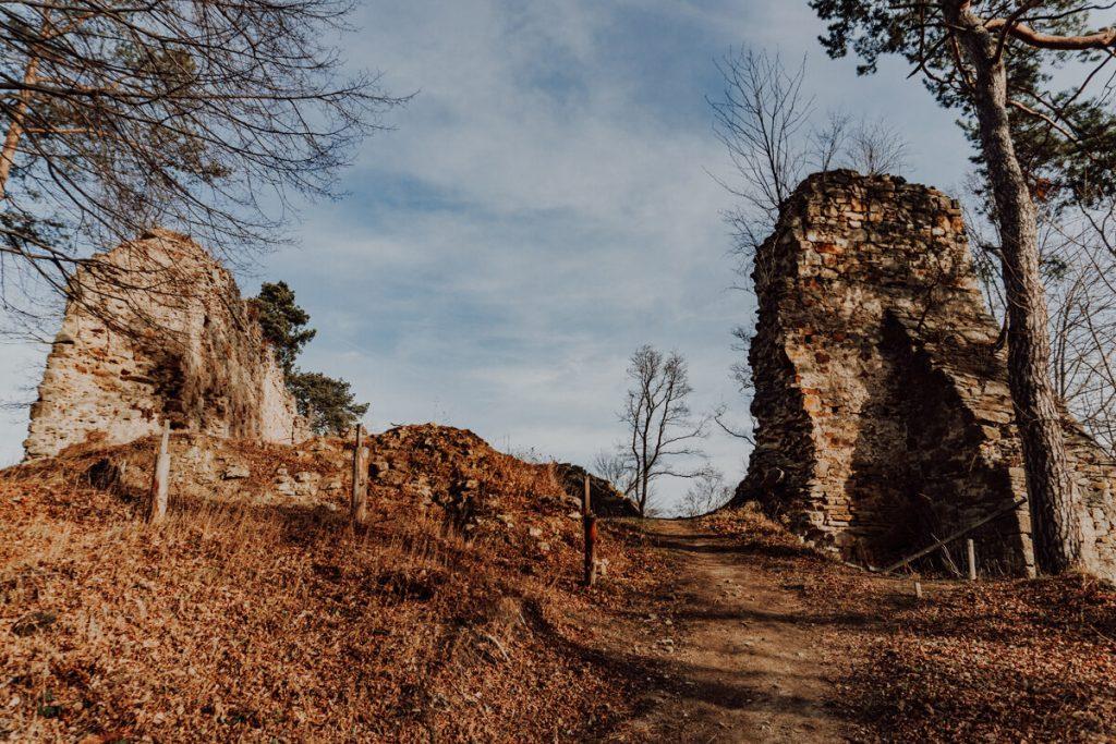 zamek zawiszy czarnego roznow
