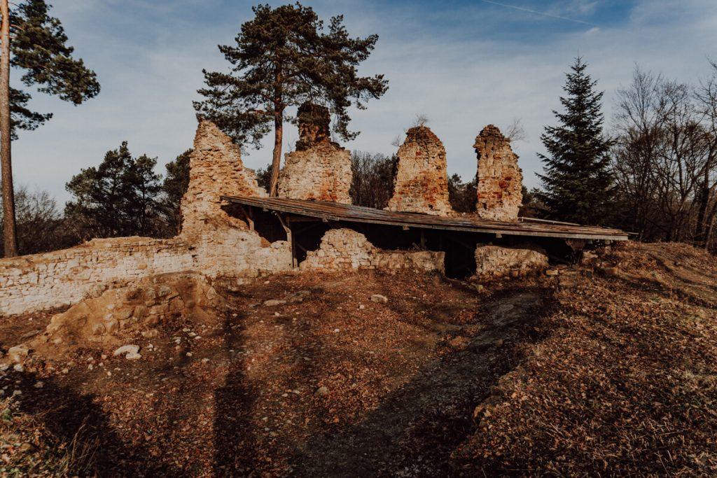 zamek zawiszy czarnego w roznowie