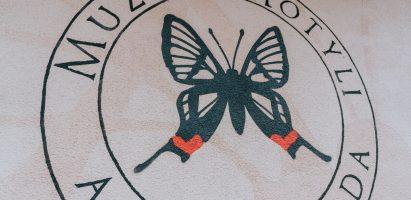 Muzeum Motyli w Bochni – czy takie miejsce może być ciekawe?