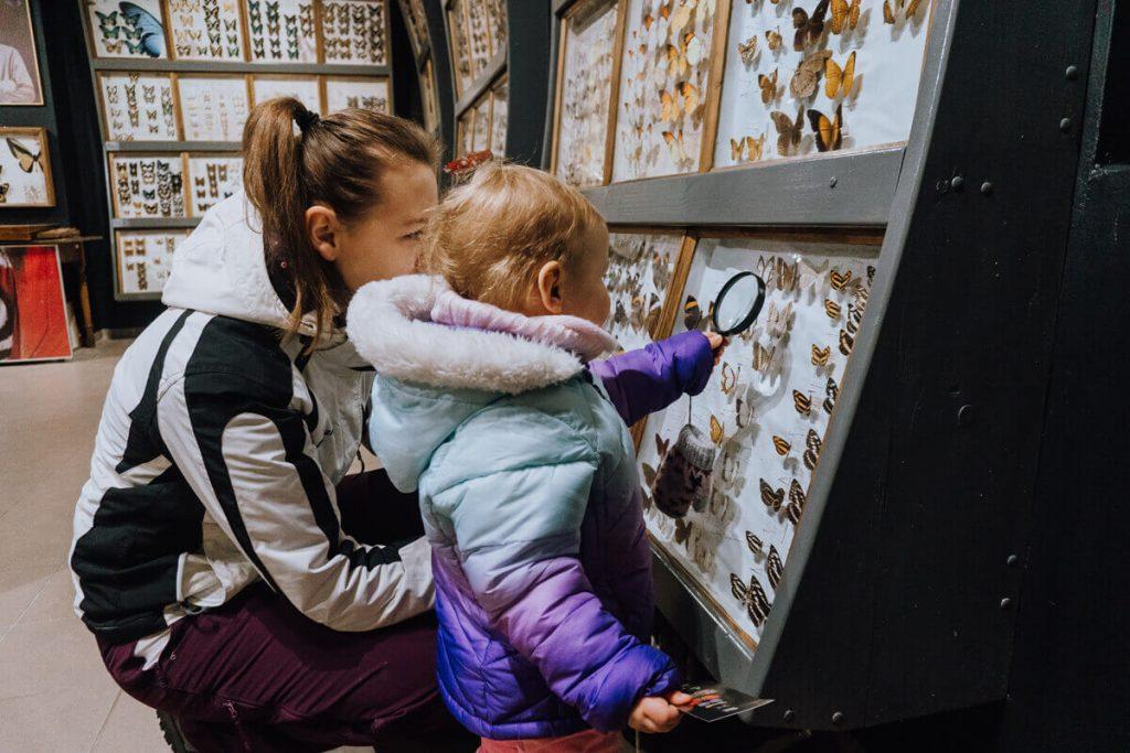 muzeum motyli bochnia z dzieckiem