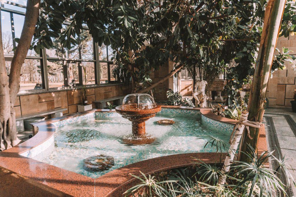 ogrod zimowy moszna