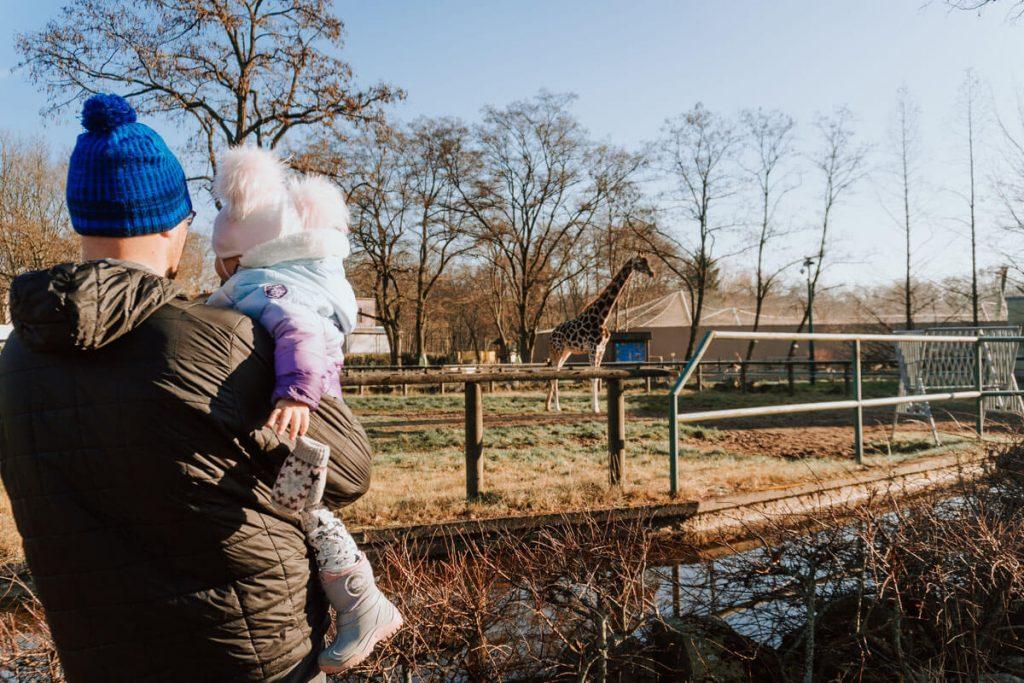 zoo lodz z dzieckiem