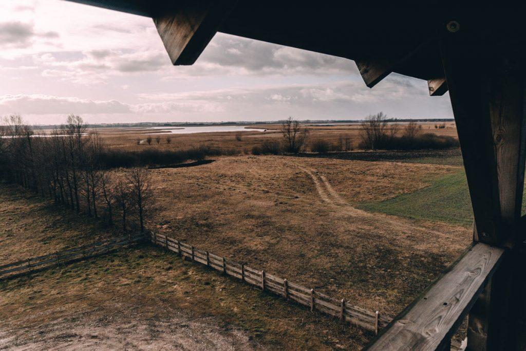 Gostyninsko Włoclawski Park Krajobrazowy punkt widokowy