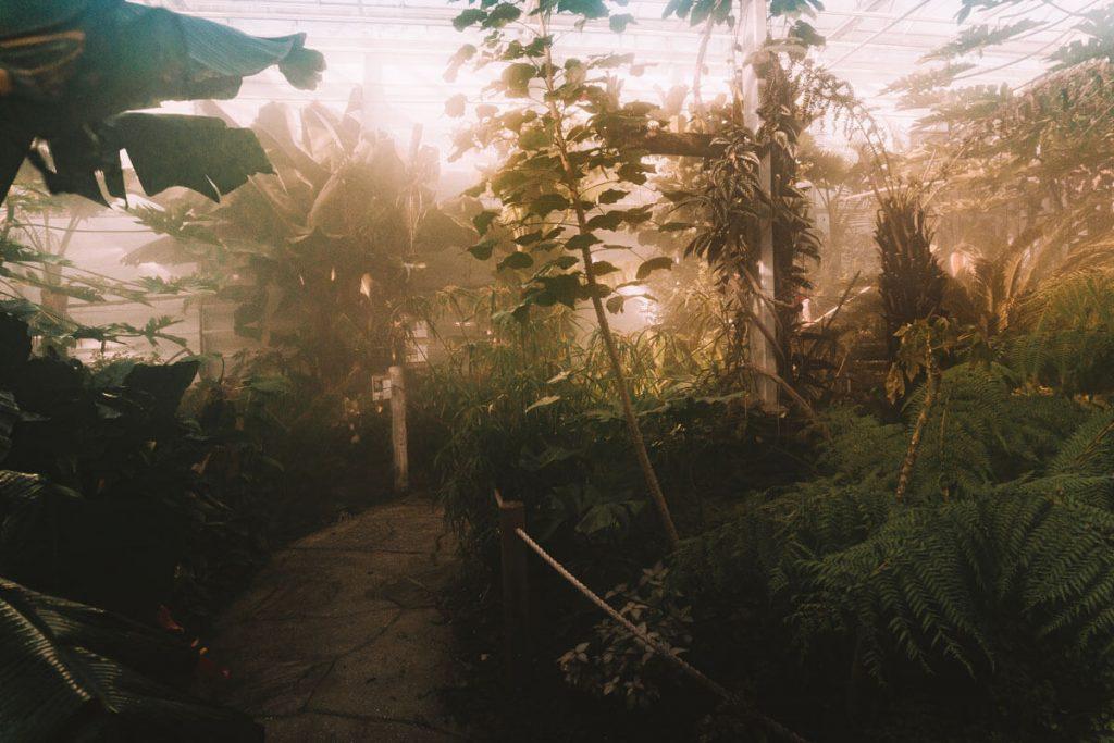 bioroznorodnosc zoo opole