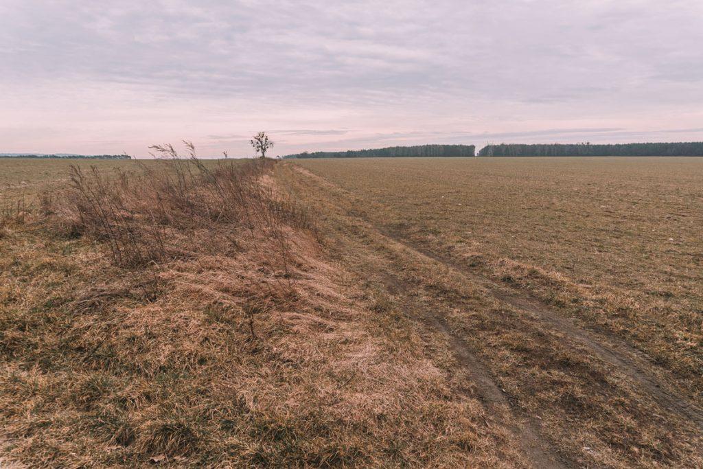 droga dojazdowa zakrzowska szpica