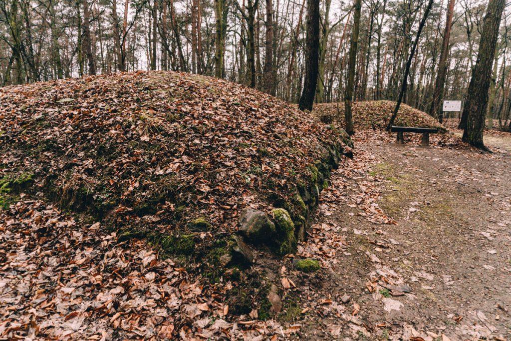 rezerwat archeologiczny w sarnowie