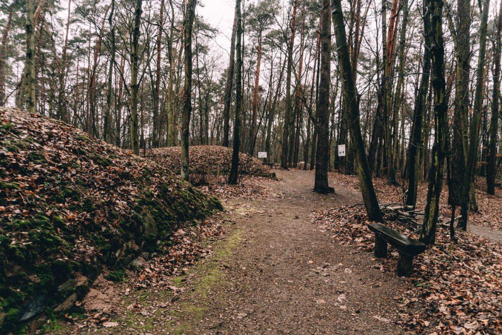 rezerwaty archeologiczne w polsce