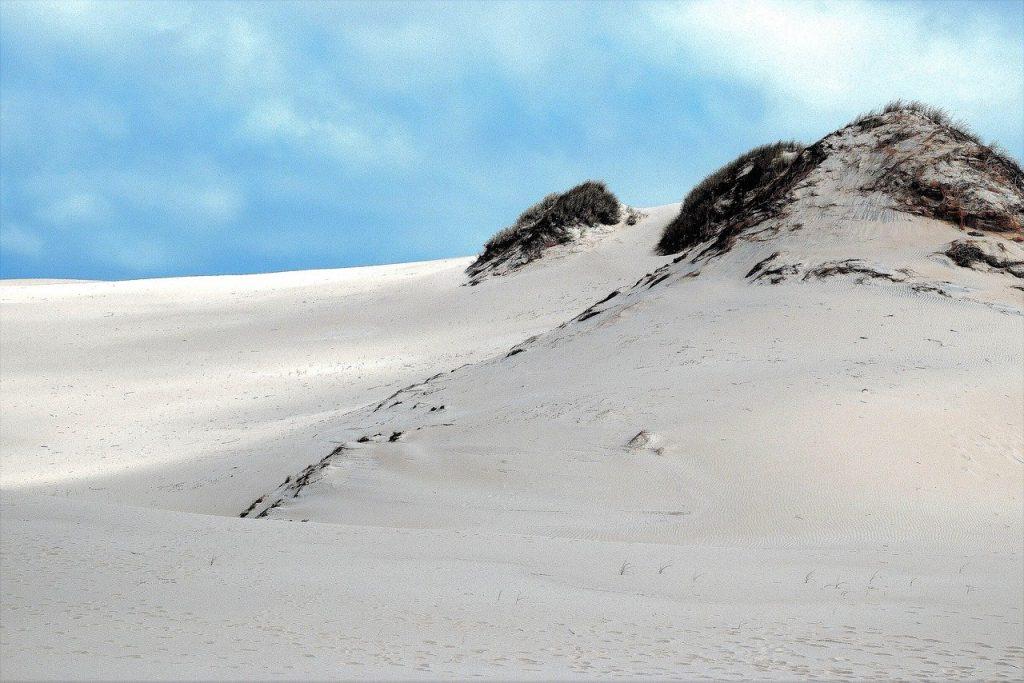 ruchome wydmy leba