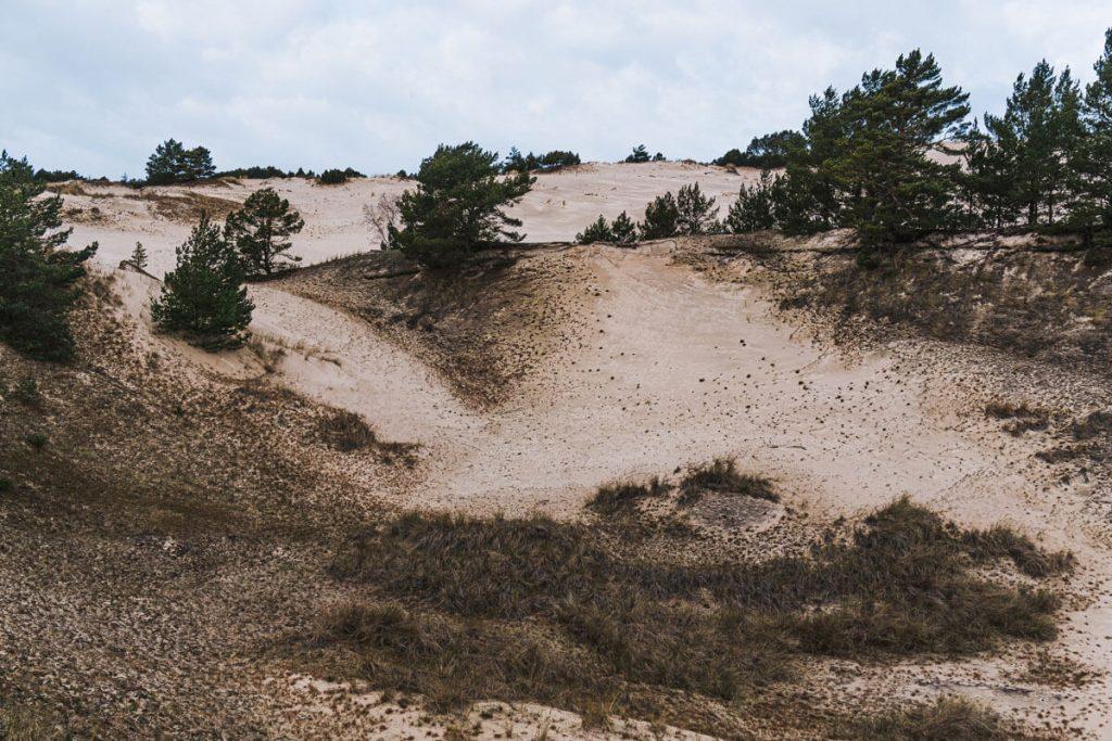 ruchome wydmy morze baltyckie