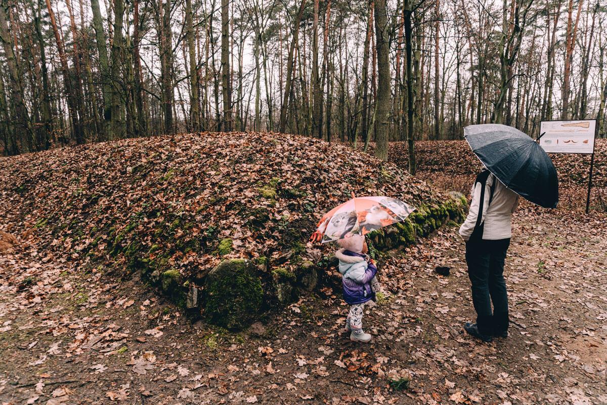 sarnowo rezerwat z dzieckiem