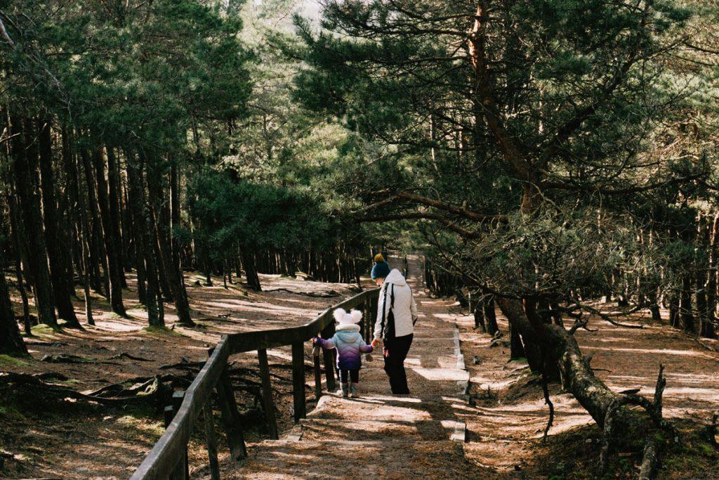 slowinski park narodowy latarnia