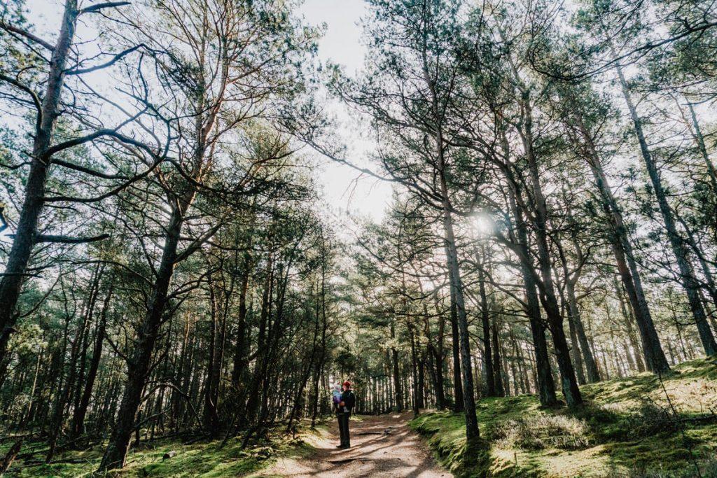 slowinski park narodowy najpiekniejszy