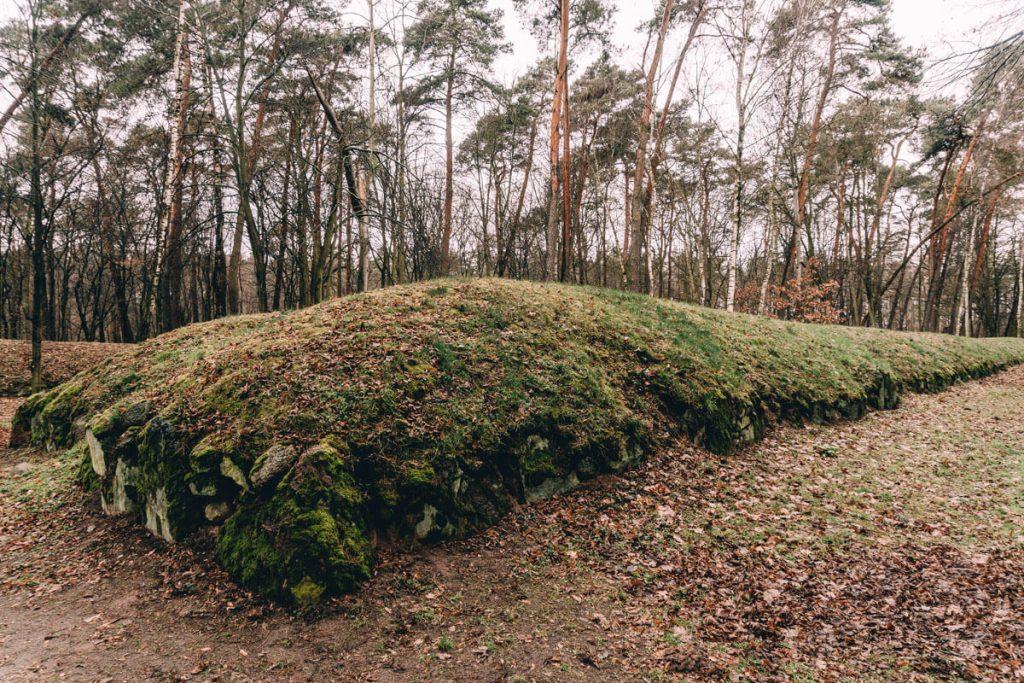 wietrzychowice park archeologiczny