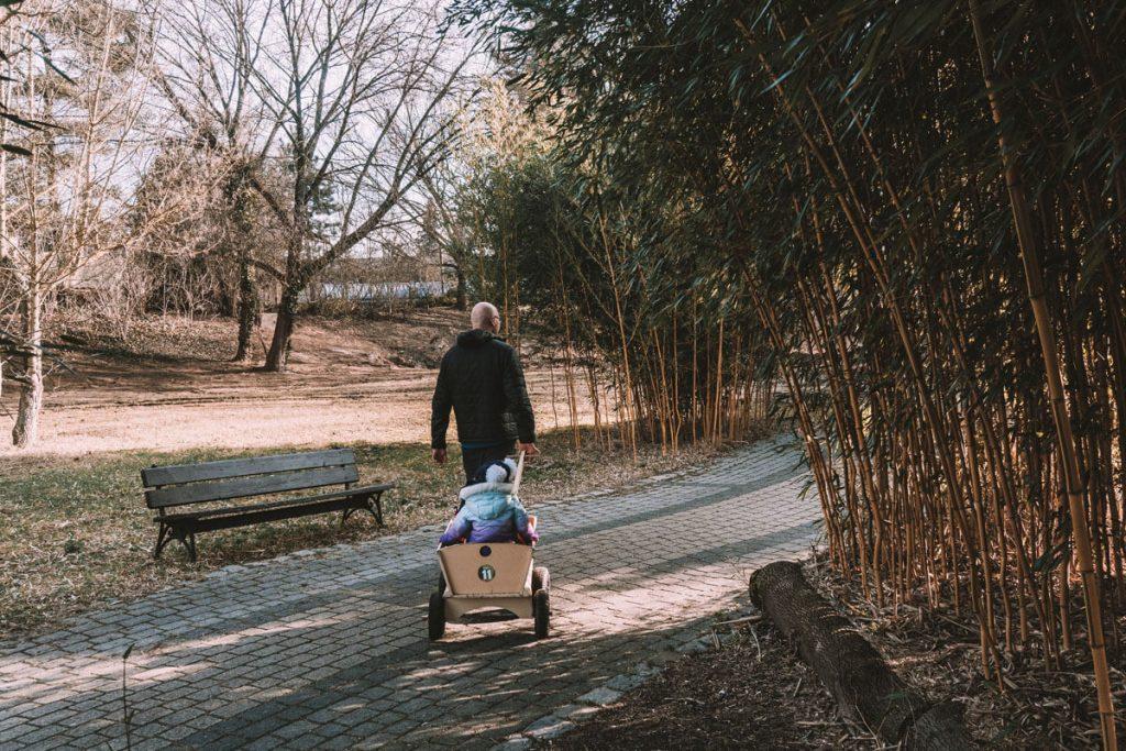 wozek do wypozyczenia dla dziecka zoo opole