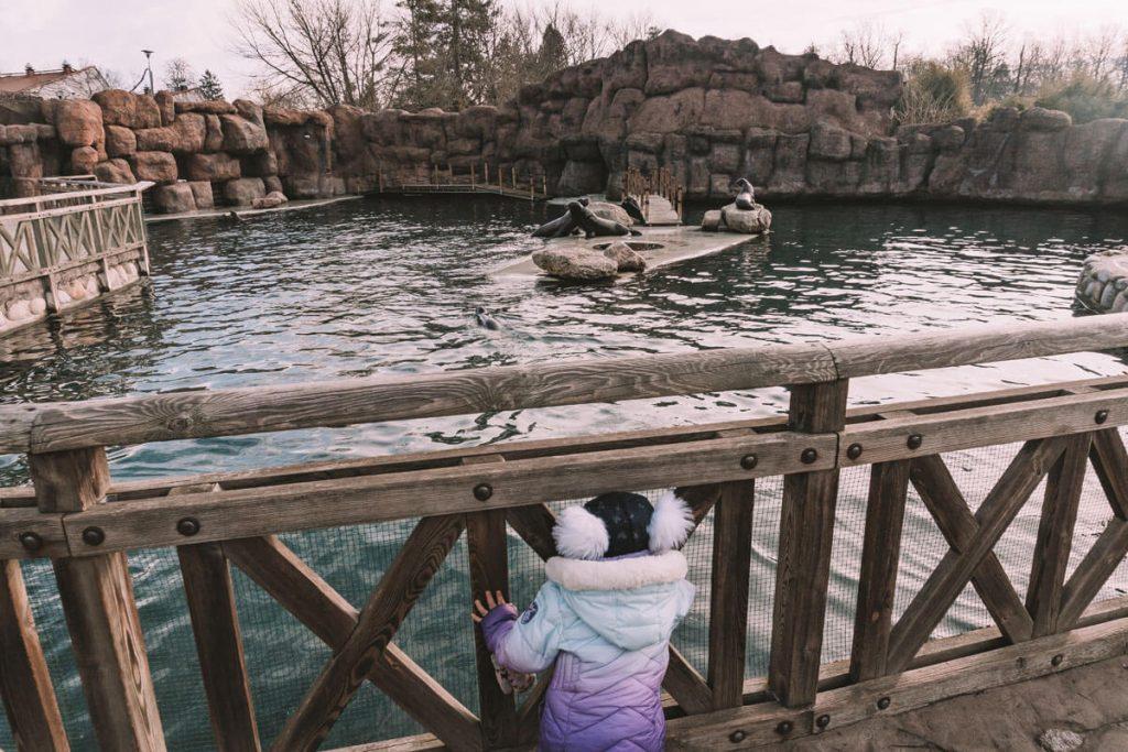 zoo opole z dzieckiem