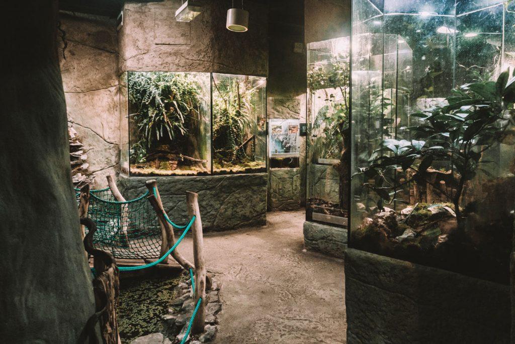 zoo opole0025