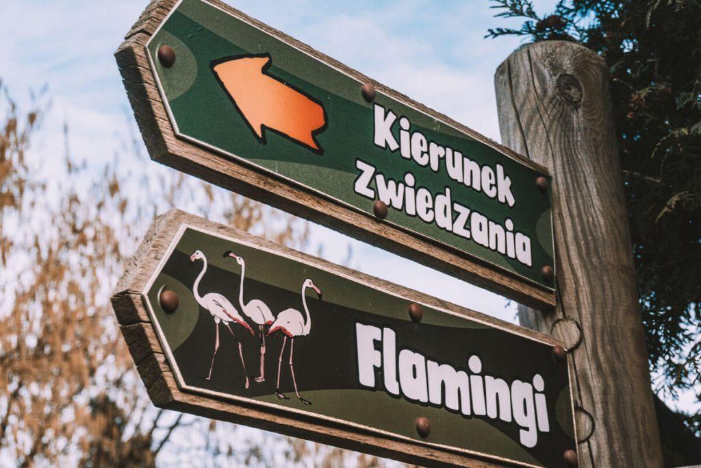 zoo opole0030