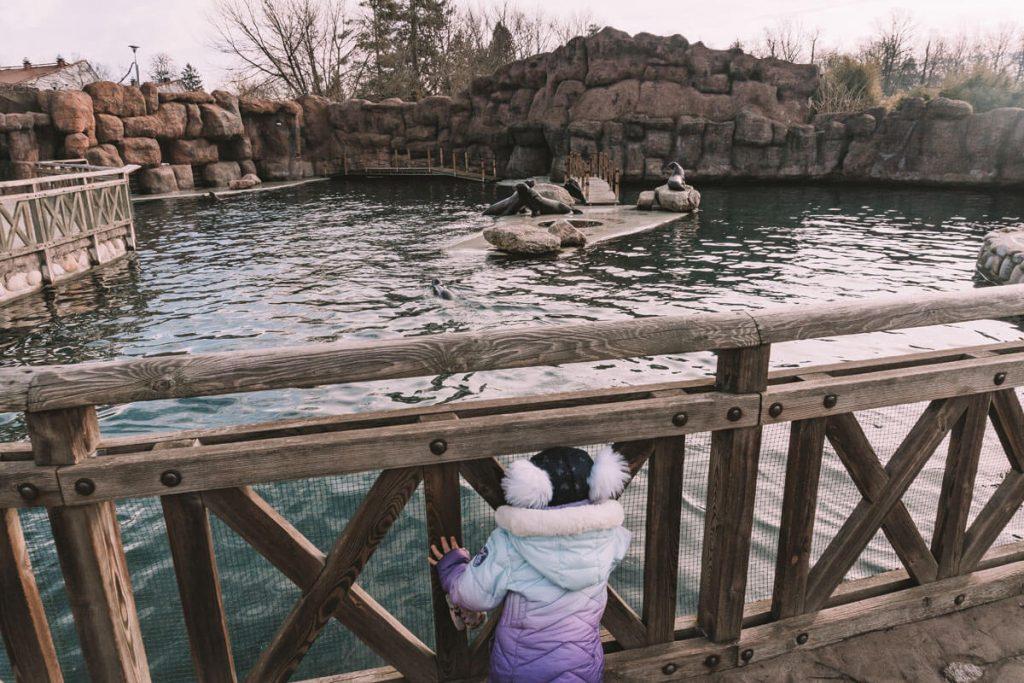 zwiedzanie zoo opole z dzieckiem
