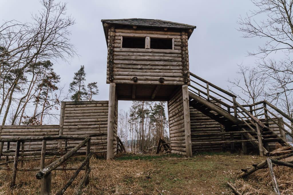 Bory Tucholskie - Grodzisko Raciąż